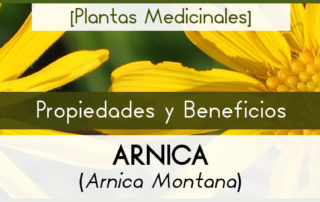 Propiedades y Beneficios de la Árnica